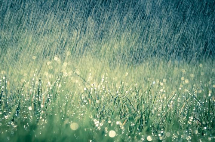 Regen-fotografie